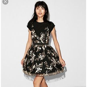 Express Gold Flower Embroidered Tulle Black Dress